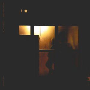 """Sachal Vasandani/Romain Collin """"Midnight Shelter"""""""